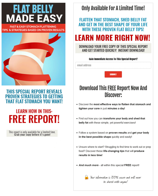 Flat Belly Made Easy PLR Squeeze Page