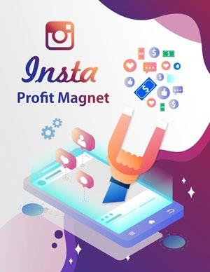 Insta Profit Magnet PLR eBook