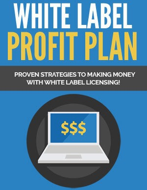 White Label Profit Plan PLR eBook