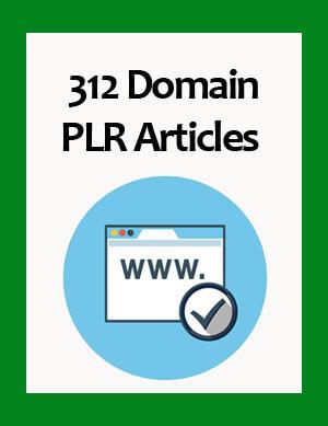 domain plr articles